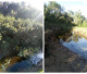 Limpieza de la costa del Arroyo Negro del Guazú: antes y después
